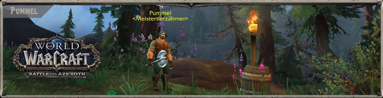 BattleforAzeroth_weltquests_header_pummel